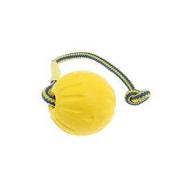 Plaukiojantis kamuolys su virvute